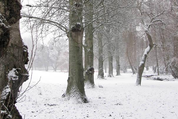 14/01/10 #uksnow Sanders Park